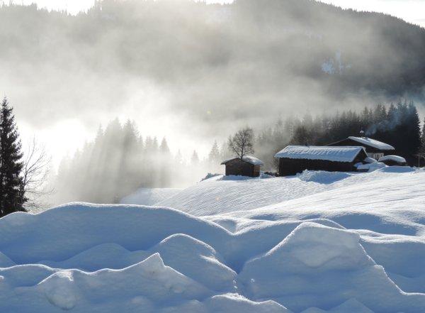 Morgennebel in der Wintersonne