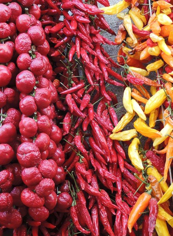 Paprika in Amalfi