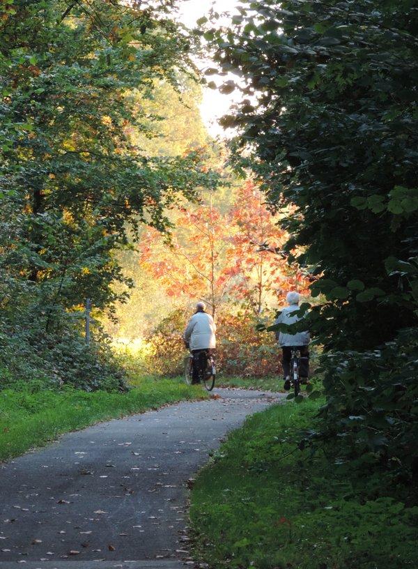 Fahrradtour im Herbstwald