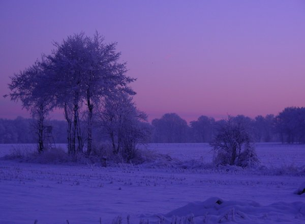 Winterliche Abenddämmerung