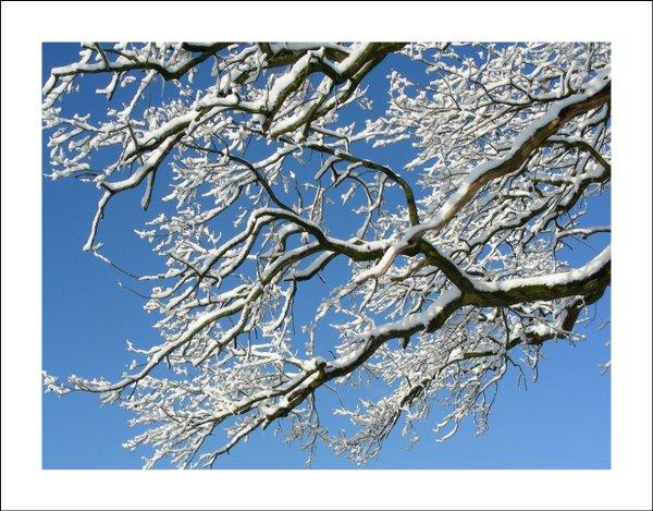 Wintermagie - Classic Edition