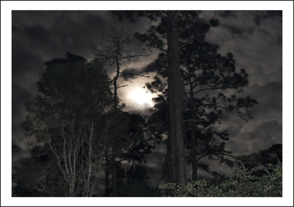 Stimmungsvoller Nachthimmel - Classic Edition