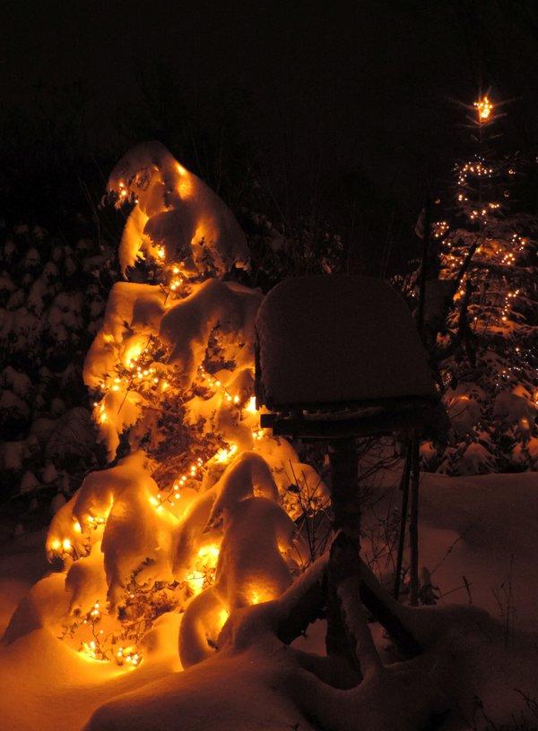 Winterlicher Weihnachtsgruß - Klappkarte mit Umschlag