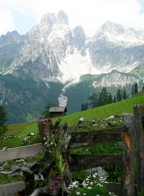 Auf der Sulzenalm, Salzburger Land