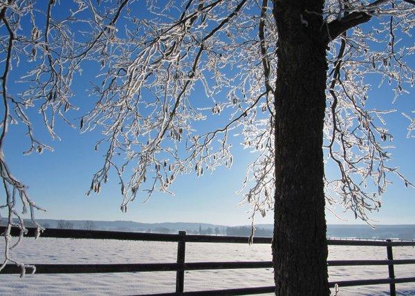 Verzauberter Wintermorgen