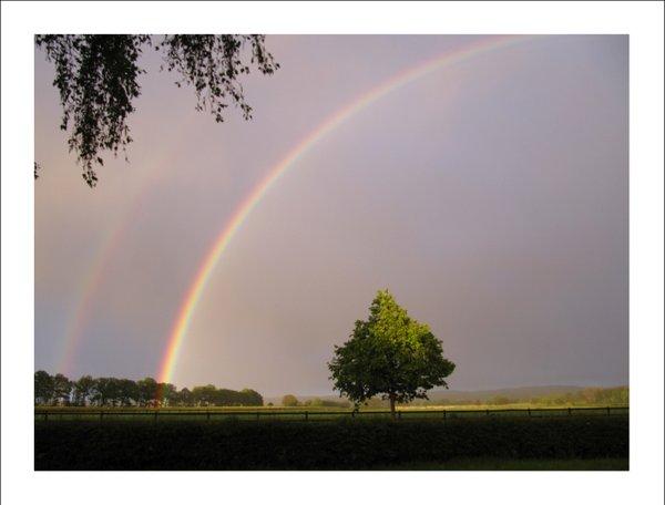Double Rainbow - Classic Edition